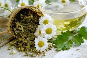 Làm dịu cơn đau bụng với hoa cúc