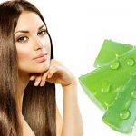 5 Cách trị rụng tóc bằng nha đam tại nhà giúp tóc mọc nhanh