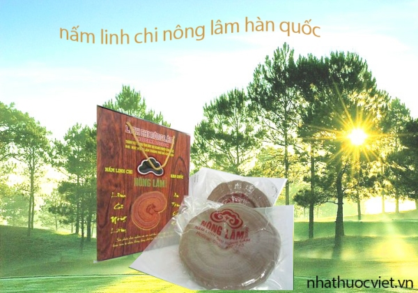 nam-linh-chi-do-han-quoc-nong-lam