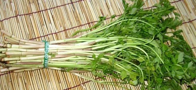 agarwood.org.vn-cach-giai-ruou-bia-hieu-qua-khi-say-1