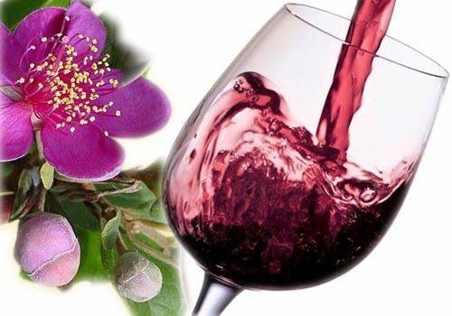 Rễ sim ngâm rượu - quả sim ngâm rượu giúp bổ thận, tráng dương