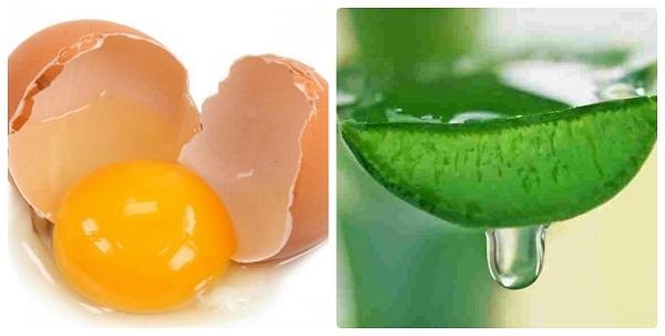 Cách trị rụng tóc bằng nha đam tại nhà kết hợp trứng gà